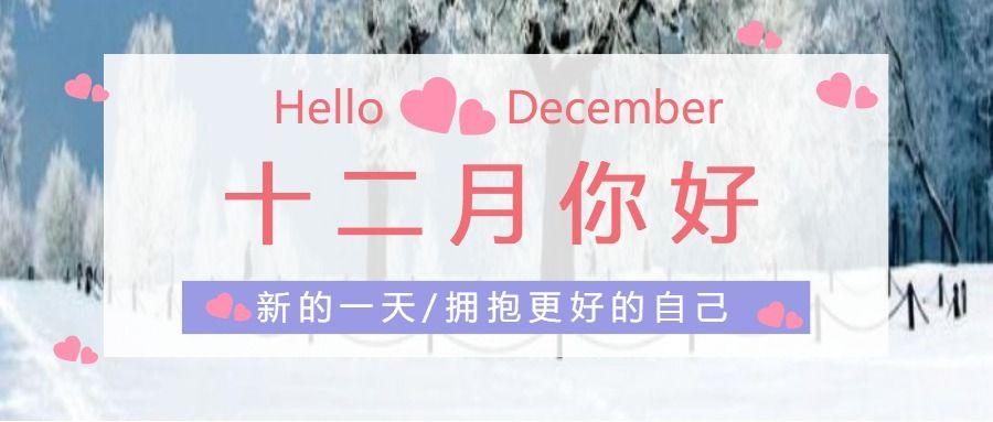 简约清新十二月你好月签首图