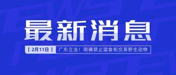最新消息自定标题蓝色简约首发实时报道新闻权威发布宣布报告通知宣传