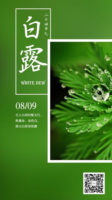 清晰自然绿色风格白露节气日签宣传海报二十四节气日签