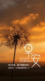简约文艺早安日签早安图早安励志