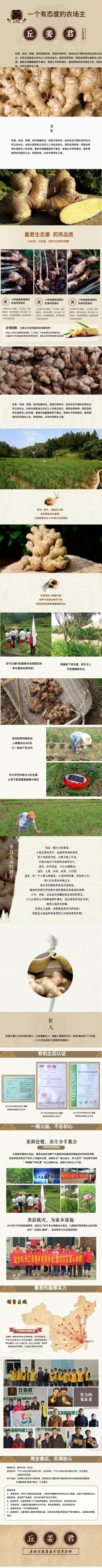 橙色中国风自然药食两用姜电商详情图