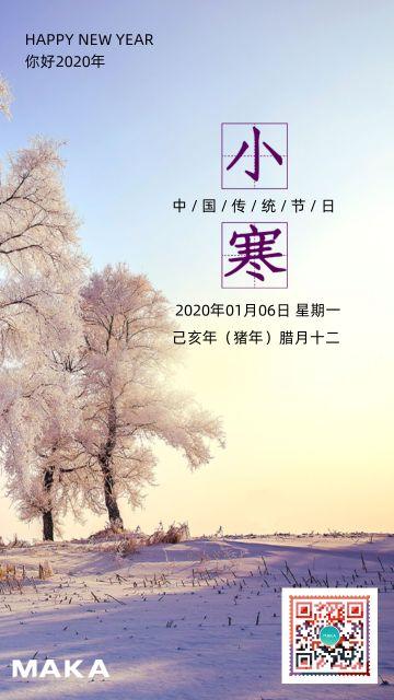 二十四节气之小寒宣传海报