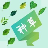清新文艺绿色种草公众号小图
