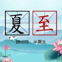 简约文艺传统二十四节气夏至微信公众号小图