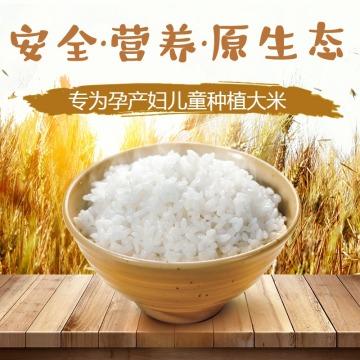 大米促销百货零售食品促销简约清新电商商品主图