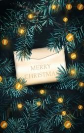 圣诞元旦跨年活动邀请函