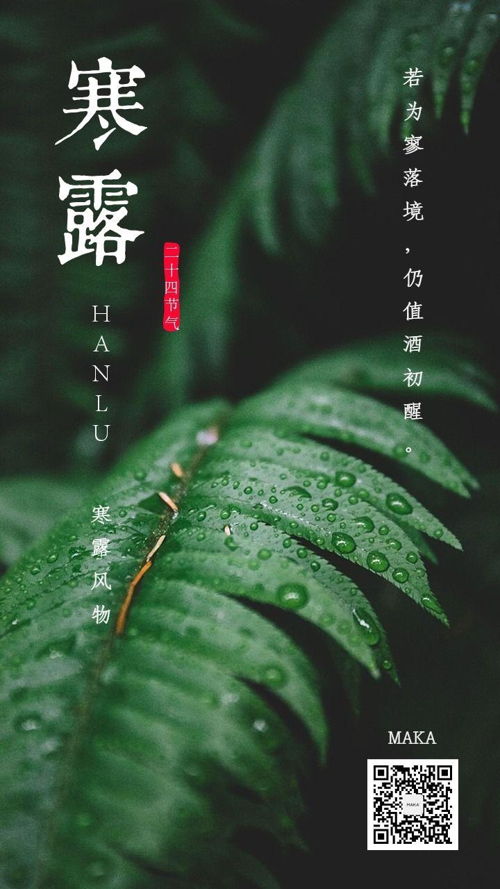 寒露节晨露绿色海报节气