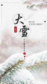 白色简约传统节气大雪海报