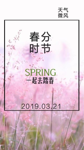 春分节气企业宣传踏春推广海报