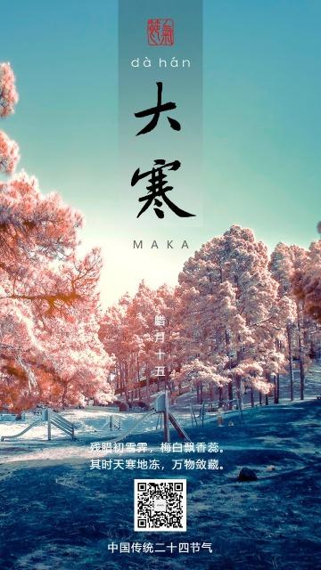 大寒节气白色简约寒雪粉色蓝色海报