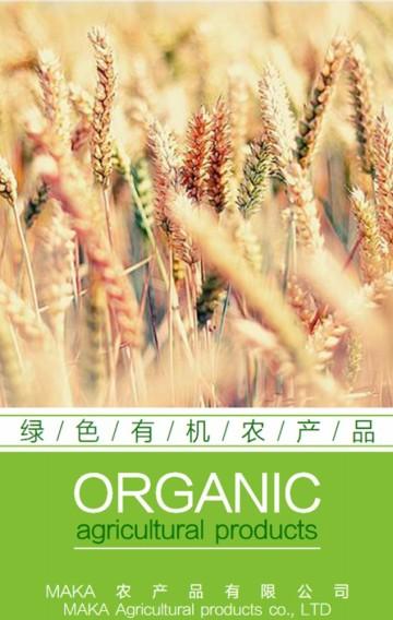 农产品企业、公司介绍、推广,适合大米、蔬果、现代农业、有机农产品,生态、环保等
