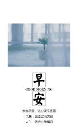 简约文艺范早安心情早安日签