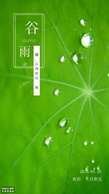 绿色清新荷叶谷雨二十四节气海报