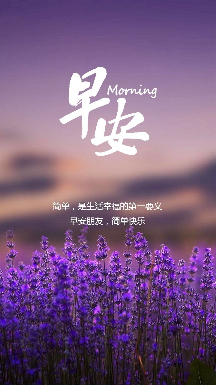 唯美花朵早安问候早晚安心情寄语