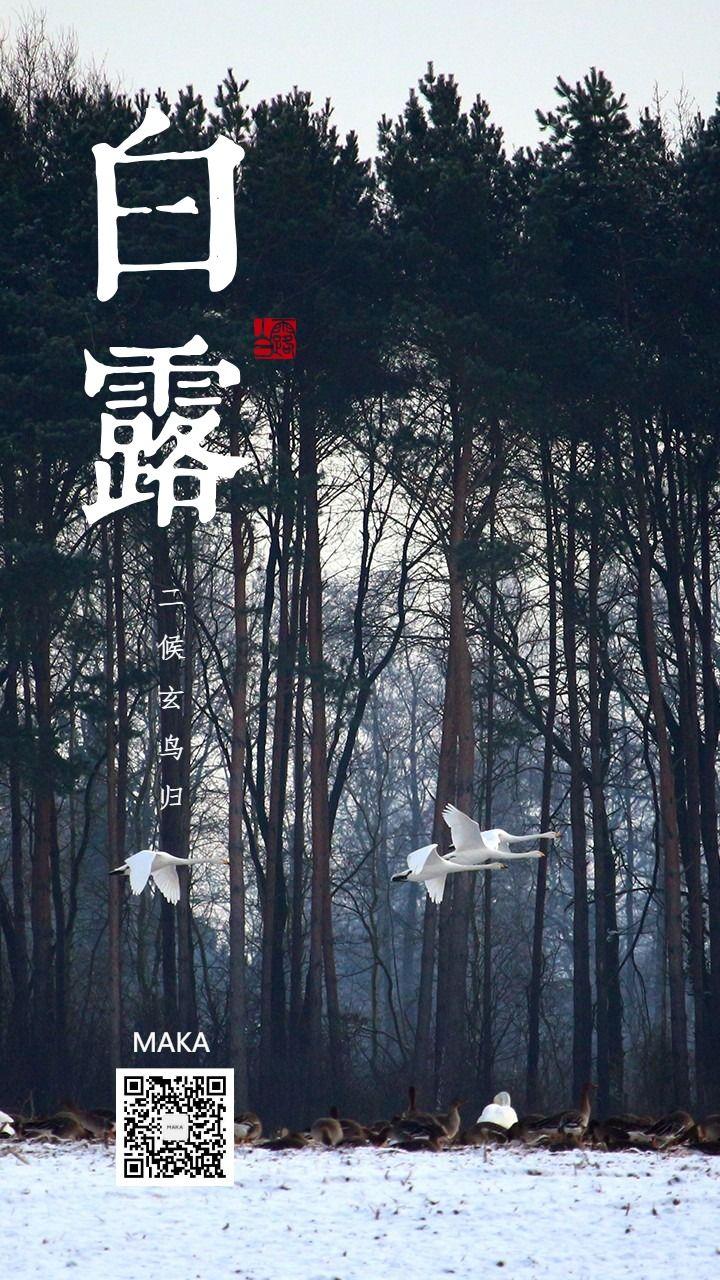 白露最秋天秋风种高山