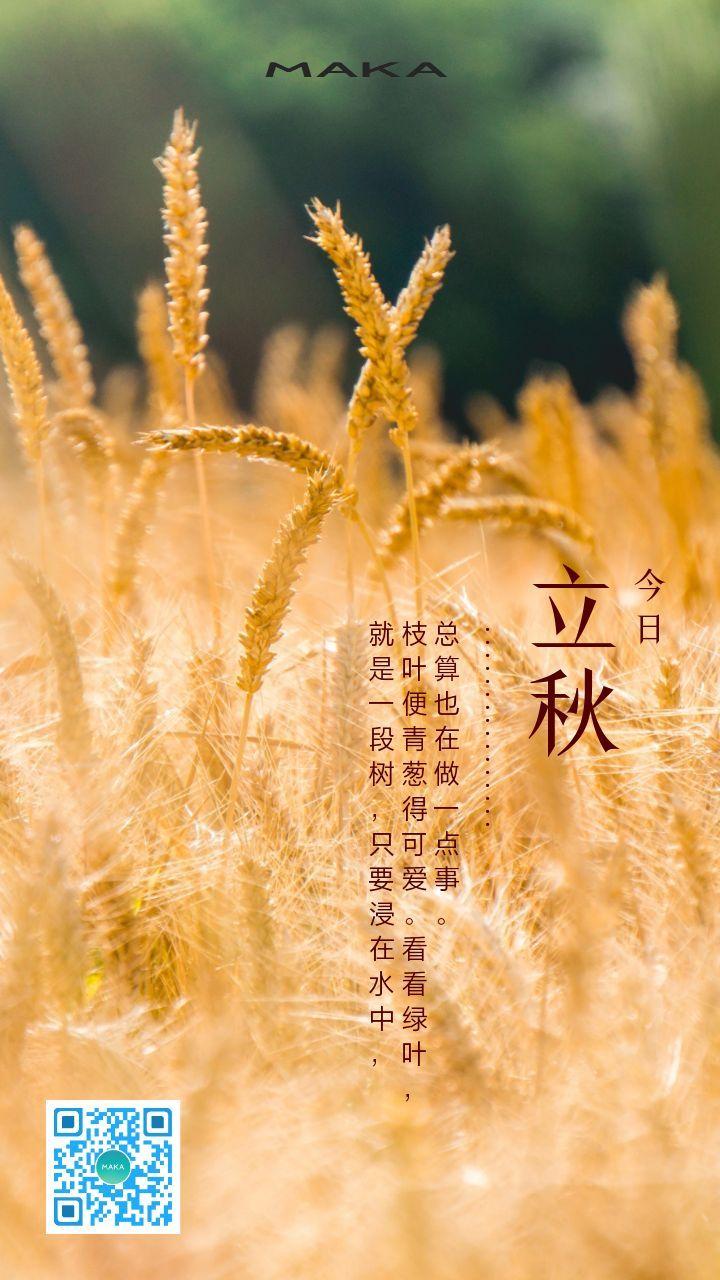 时尚简约立秋节气摄影海报