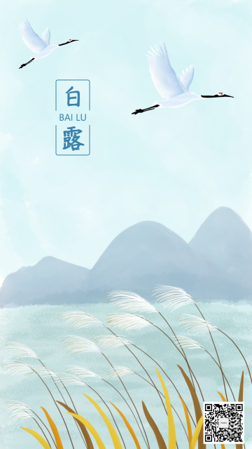 节气白露插画手绘手机海报
