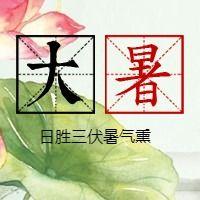 简约文艺传统二十四节气大暑微信公众号小图