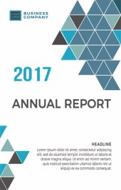 公司企业项目总结报告