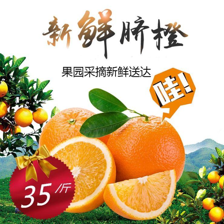 正宗江西赣江脐橙新鲜当季水果电商主图