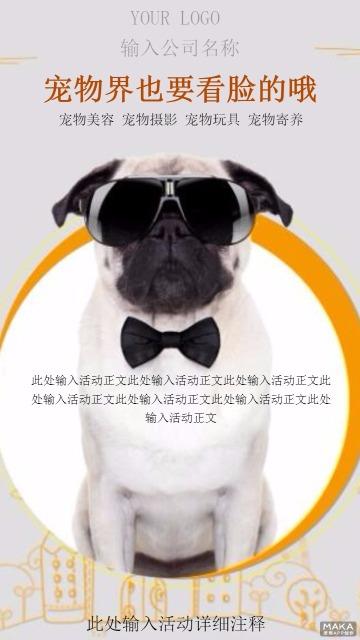 宠物界也要看脸的哦促销海报
