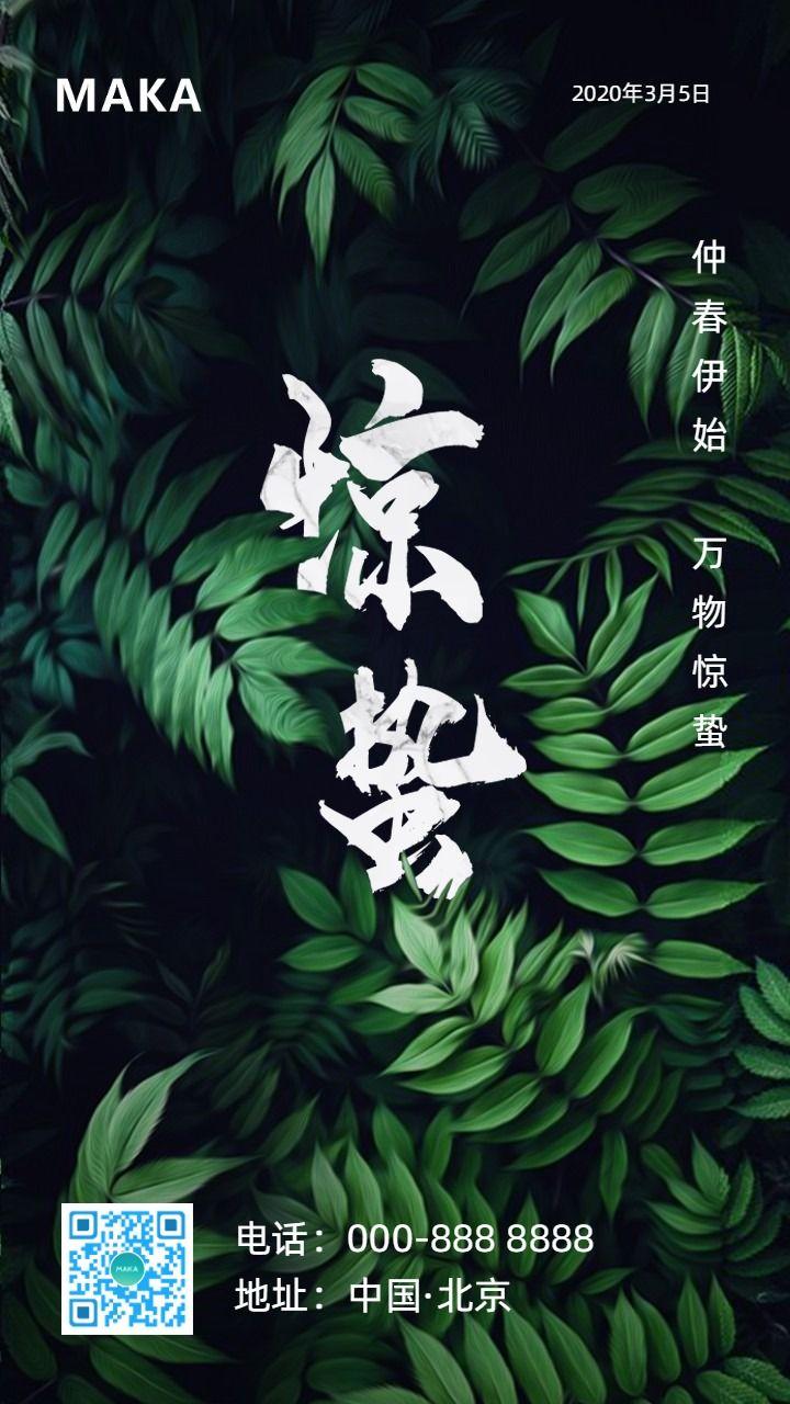 清新大气惊蛰节气中国传统二十四节气早晚安心情日签励志习俗通用企业文化宣传海报