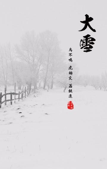 唯美/大雪/传统节日/二十四节气之一/企业宣传模板