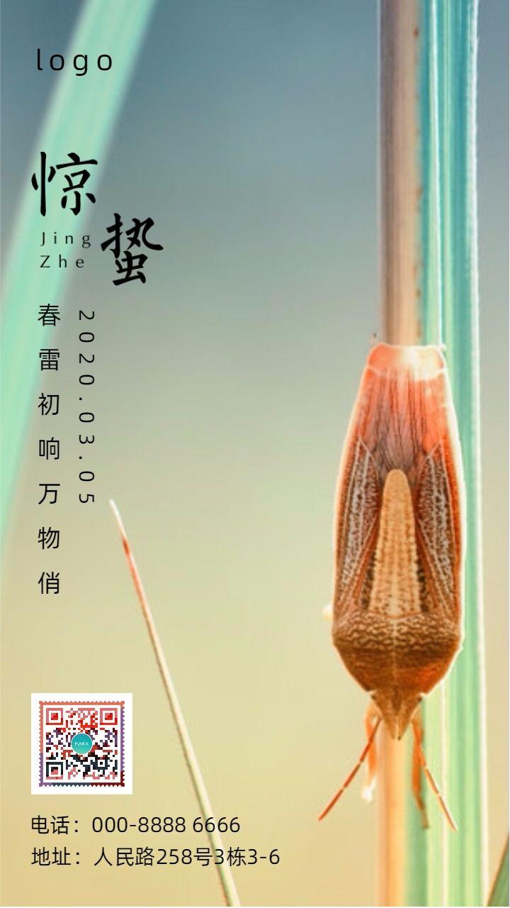 惊蛰/中国传统24节气企业宣传海报
