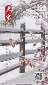 大寒节气大气简约白红传统大雪海报