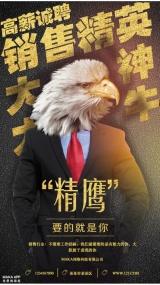 个性老鹰人物创意销售精英招聘海报