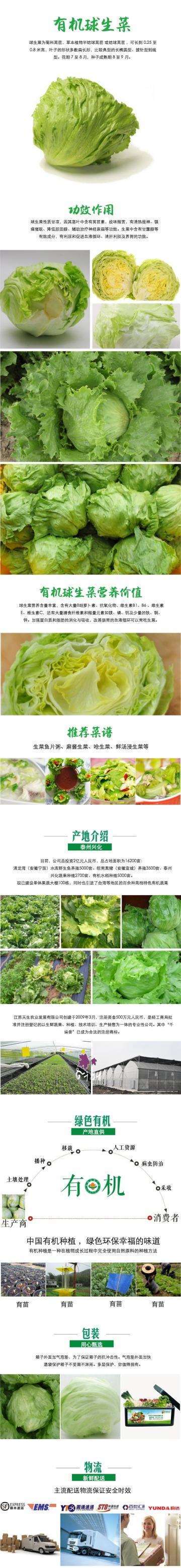 绿色清新简约有机球生菜电商详情图