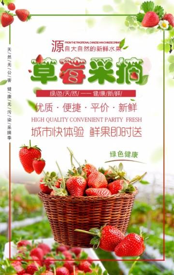 草莓采摘 新鲜果园 现摘现发 水果店促销