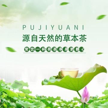 清新简约文艺荷叶茶茶叶电商主图