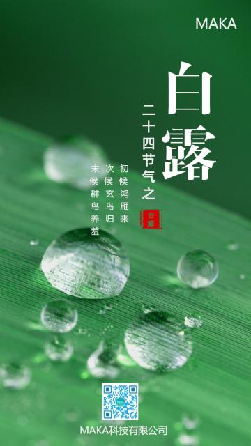 绿色清新简约白露节气手机海报模板