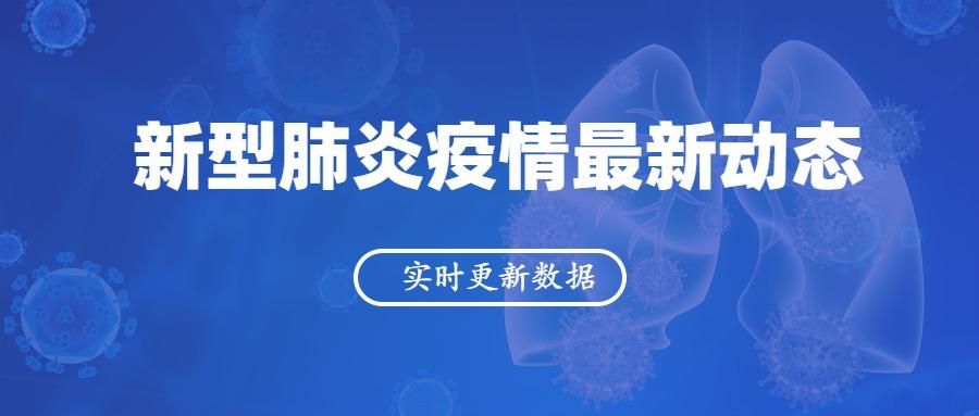 """深蓝色简约""""新型肺炎疫情最新情况"""""""