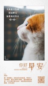 简约励志猫咪踮起脚尖小清新早晚安励志日签晚安心情寄语宣传海报