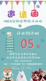 宠物店简约可爱风开业邀请函活动促销海报