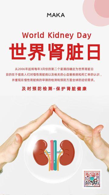 红色简约风格世界肾脏日公益宣传手机海报