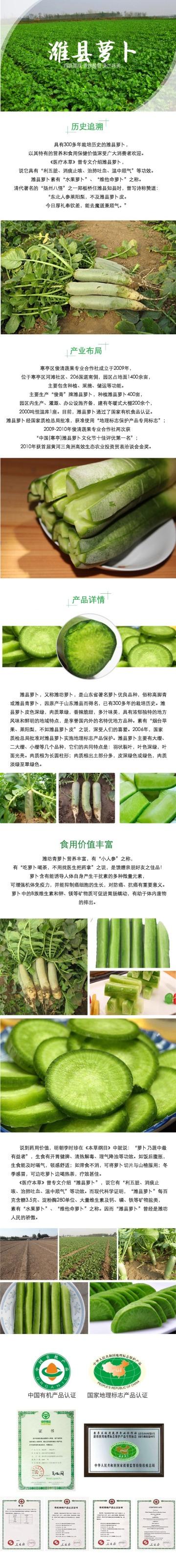 简约清新潍县青萝卜电商详情图