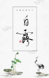 中国风白露节气企业宣传品牌推广h5