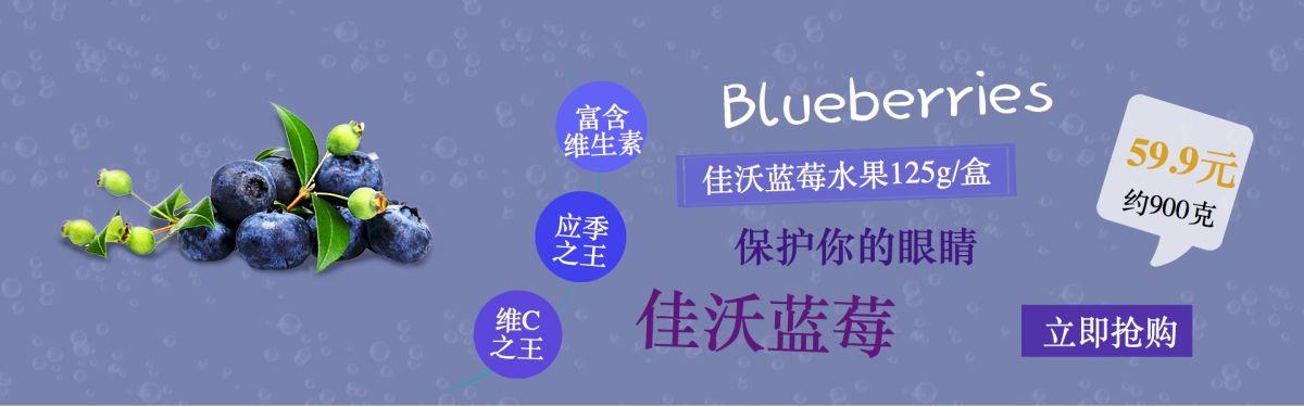 清新活力蓝莓电商banner
