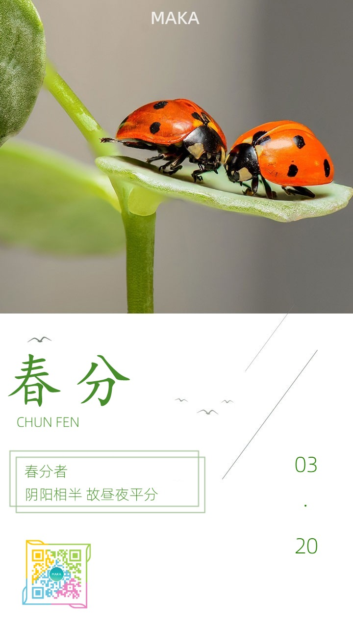 二十四节气春分清新中国风日签宣传海报