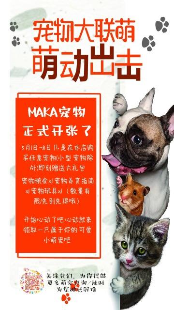 宠物店开业宠物店活动促销宠物店开业可爱活动促销宣传海报