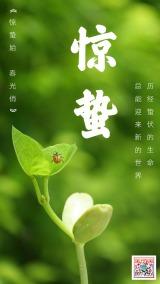 绿色节气惊蛰中国二十四节气绿色宣传海报