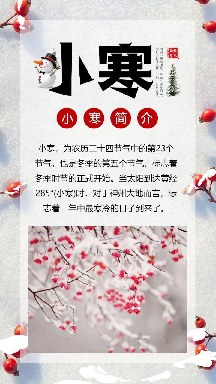 小寒海报/24节气/农历