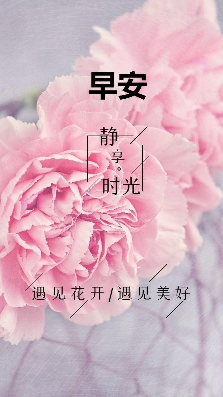 早安心情语录静享时光遇见花开遇见美好