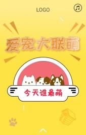宠物投票活动企业店铺宣传