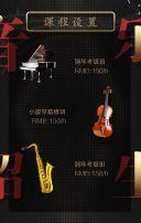 高端音乐培训机构/音乐乐器招生/培训学习班教育系列招生