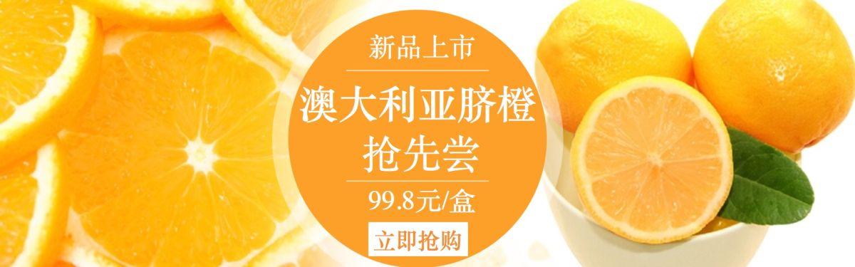 清新活力脐橙电商banner