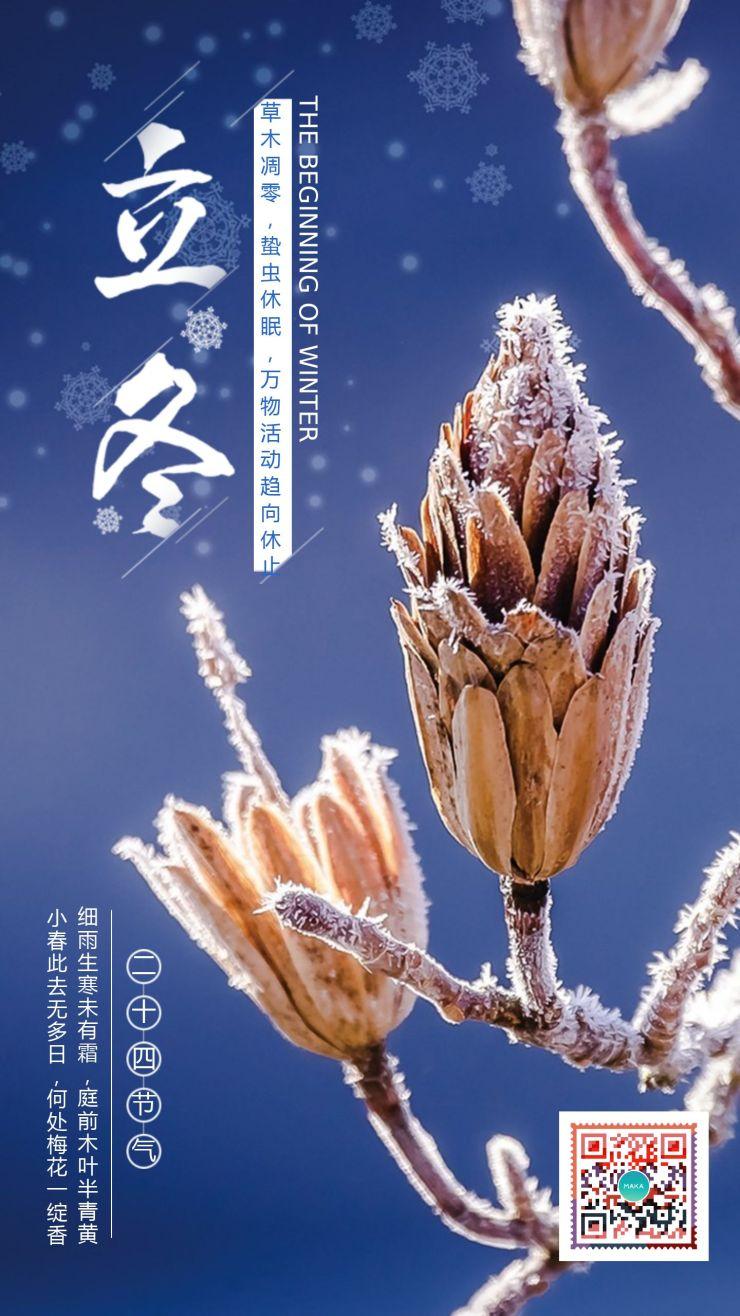 简约清新二十四节气之冬至宣传海报